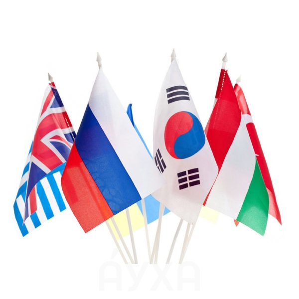Купить в Хабаровске небольшой/маленький тканевый /из бумаги флаг/флажок на пластиковой палочке с моим нанесением/рисунком/изображением/именем